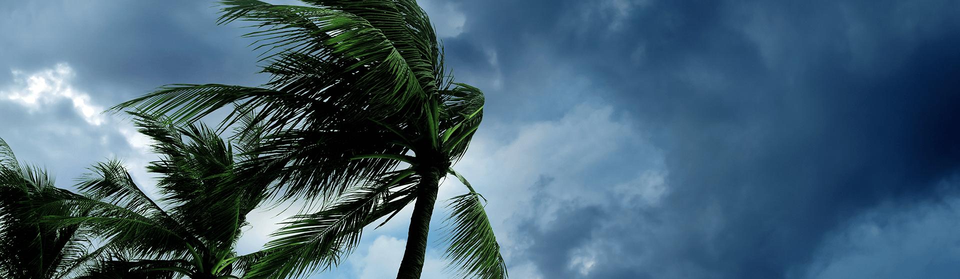 hurricane_prep_fw